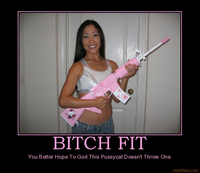 bitch-fit-asian-hello-kitty-gun-assault-demotivational-poster-1274495553
