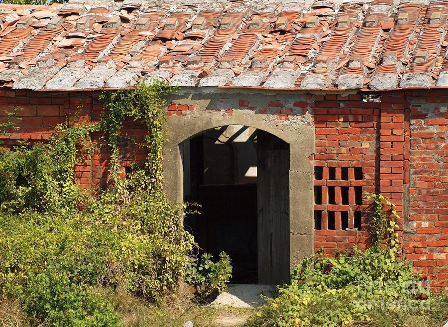 deserted-chinese-farmhouse-yali-shi