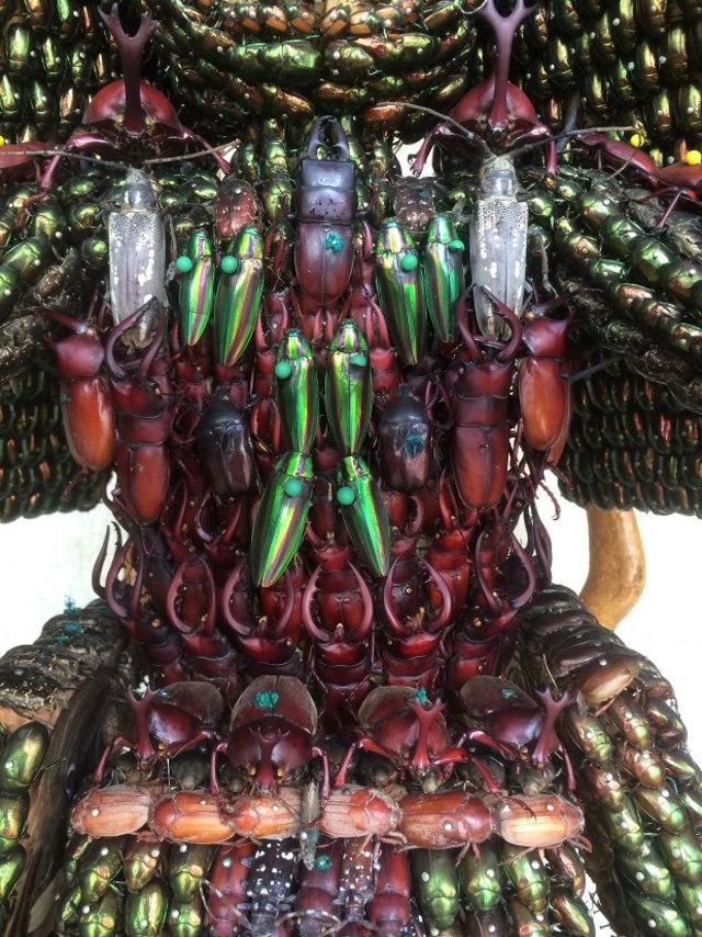 samurai-bug-armor-4